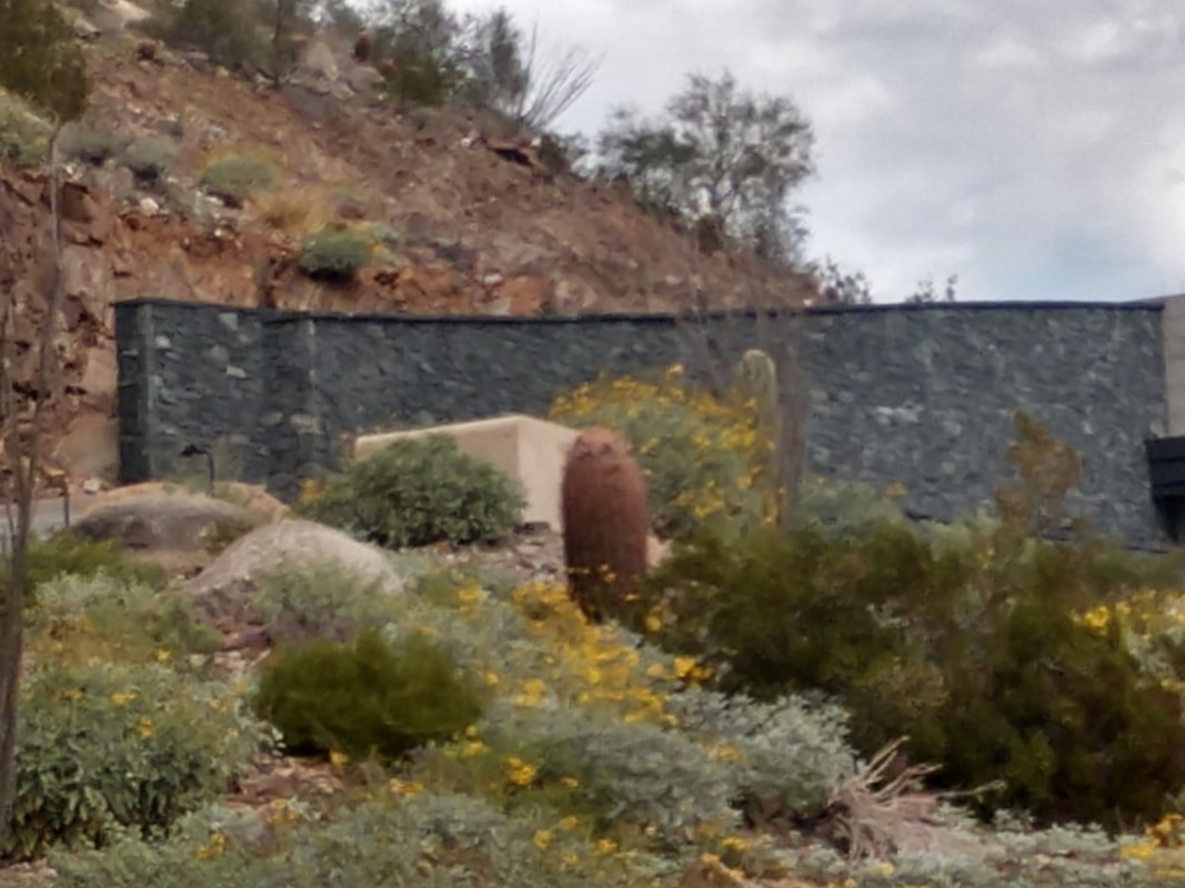 This is a picture of a decorative block wall in Henderson Nevada.